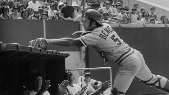 (Original Caption) Reds' catcher Johnny Bench reaches over the Phils' dugout but only traps Denny Doyle's foul in the eighth inning in Philadelphia 6/4. Bench had better luck in the first inning when he hit a two run double to give the Reds a 2-0 victory over the Phillies.